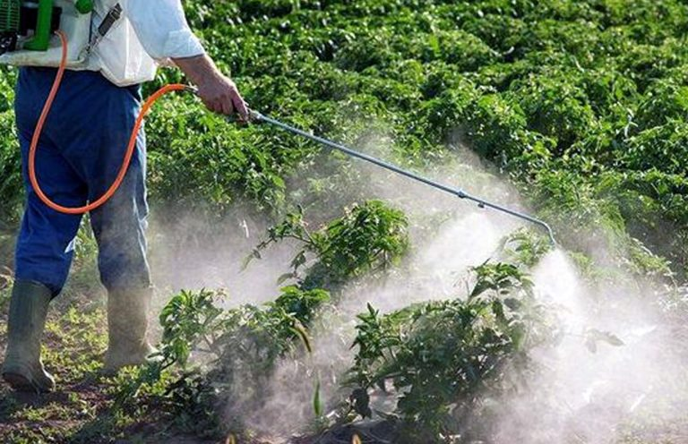 fitosanitarios-profesional